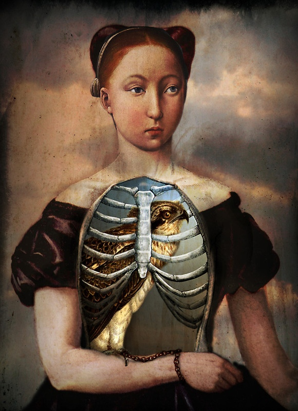 catrin-welz-stein-captured-birdcage